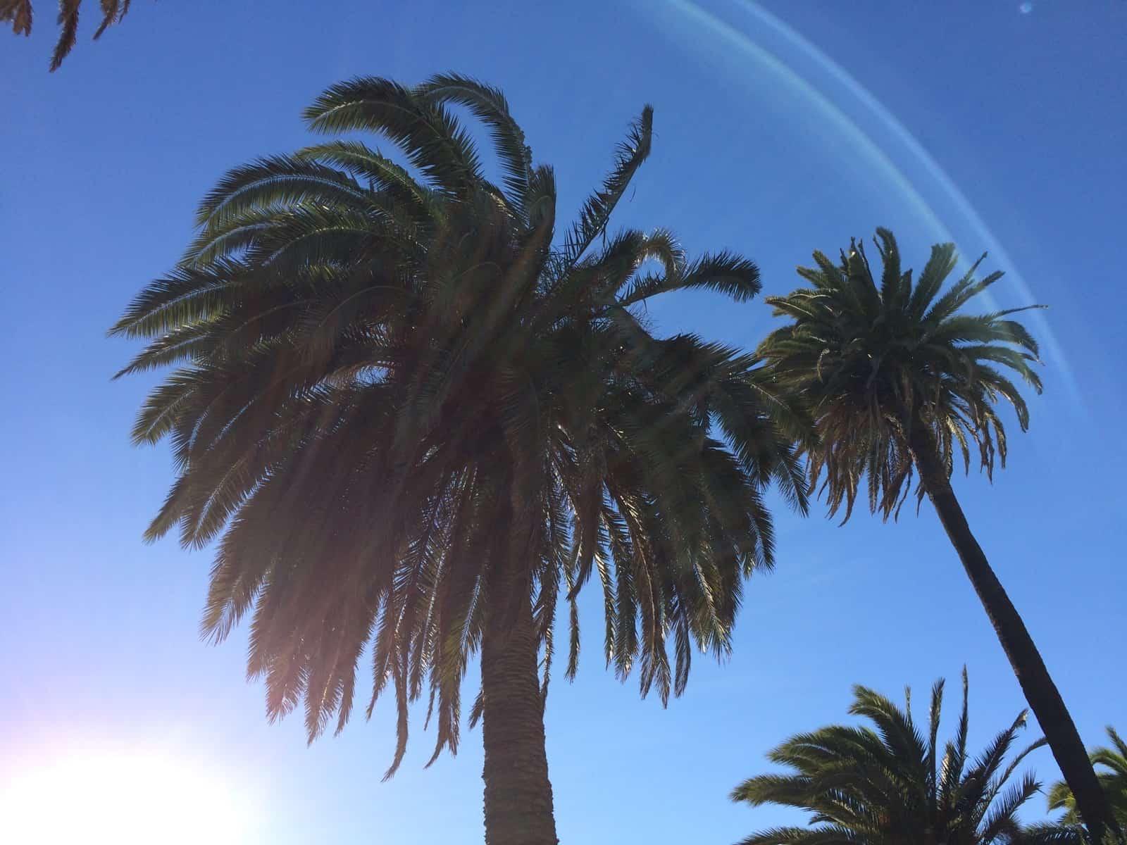 Los Angeles – vielfältiger kann Urlaub kaum sein